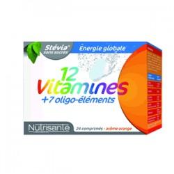 Nutrisanté Action Globale Complément Alimentaire Vitaminé 24 Comprimés