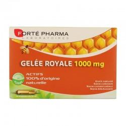 Forté Pharma Gelée Royale 1000mg 20 Ampoules